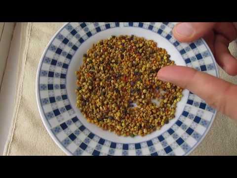 Как правильно употреблять пыльцу пчелиную