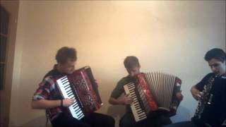 Lord Of The Rings - In A Dreams (Crazy Accordion Trio)