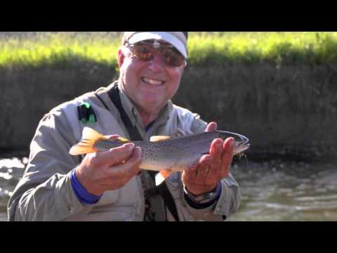 YELLOWSTONE BACKPACKING FOR CUTTHROAT TROUT