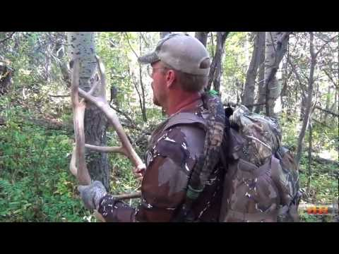 Looking for Big Bulls in Southern Colorado - Episode #4 by RHR