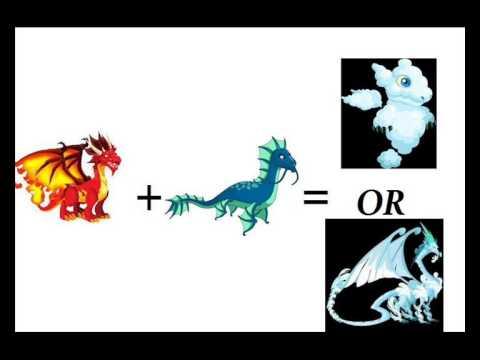 Dragon City : Simple Breed