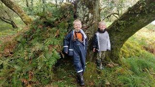 Backcountry Survival Camping in Primitive Shelters & Coastal Foraging (Scottish Highlands)