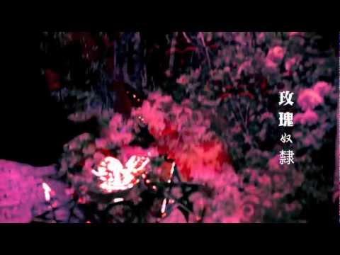 林二汶《玫瑰奴隸》官方MV(高清版)