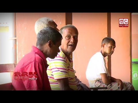 WINIVIDA - National lnstitute Of Mental Health Sri Lanka | Episode 13