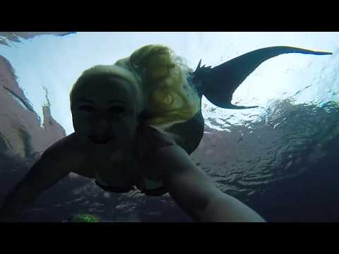 A Wish Come True: Swimming with Mermaid Melissa At Atlantis!