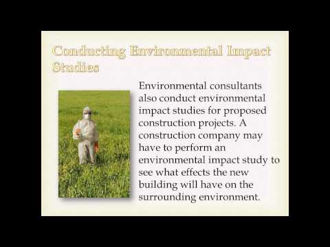 What Do Environmental Consultants Do