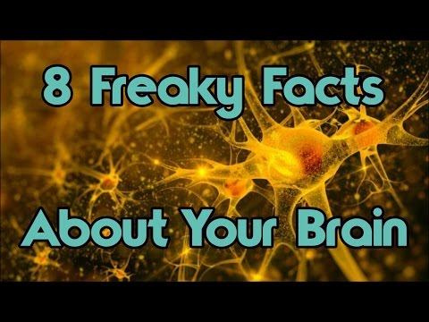 8 Freaky Facts You Didn't Know About Your Brain