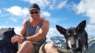 A short video of my sweet boy Chase. A FMD Formosan Mountain Dog fr...