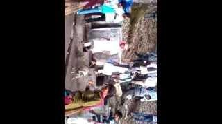 Badidhar Carniwal Solan Arki