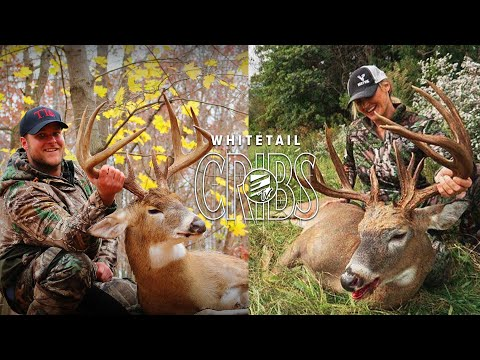 Whitetail Cribs: From Ohio Giants To Hunting Stories