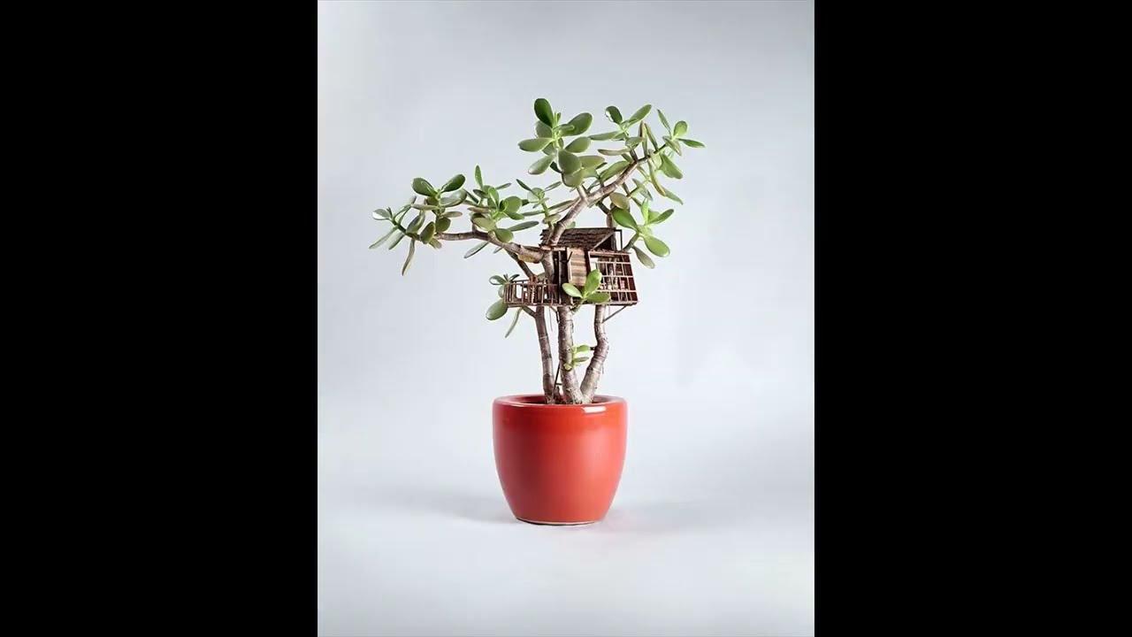 Casas de arbol en tama o miniatura que encantar n youtube - Casas en miniatura de madera ...