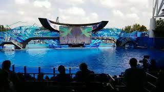 One Ocean Sea World 10-22-17