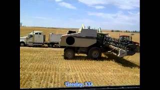 2012 Wheat and Barley Harvest