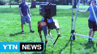 사람처럼 걷는다...로봇, 첫 자연 보행 성공 / YTN