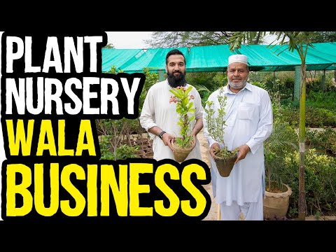 Plant Nursery Wala Business Karo | 50/50 Margin | Azad Chaiwala Show