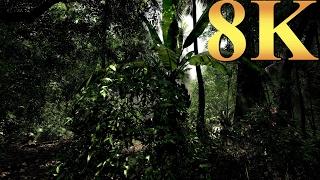 Crysis 8K Amazonia River Gameplay Titan X Pascal 3 Way SLI PC Gaming  4K | 5K | 8K and Beyond