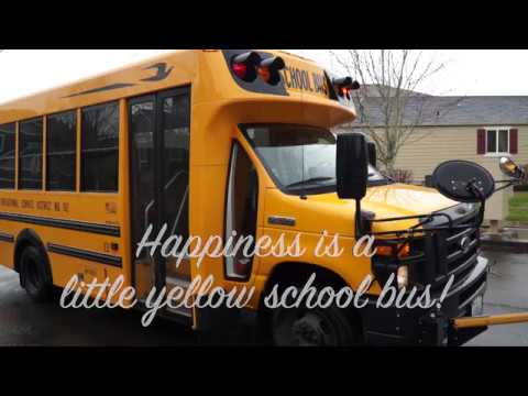Happiness is a little yellow school bus!