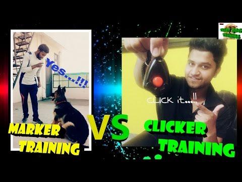 Clicker Training Vs Marker Training! { dog training in hindi }