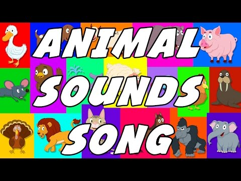 Animal Sound Song | These Are The Sounds That Animals Make | Original Songs For Kids