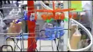 видео где купить торговое оборудование в  Москве