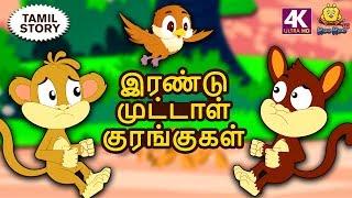 இரண்டு முட்டாள் குரங்குகள் - Bedtime Stories for Kids | Fairy Tales in Tamil |Tamil Stories for Kids