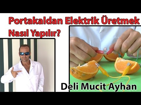 Portakaldan Elektrik Üretimi ve Üretmek Nasıl Yapılır? | Deli Mucit Ayhan