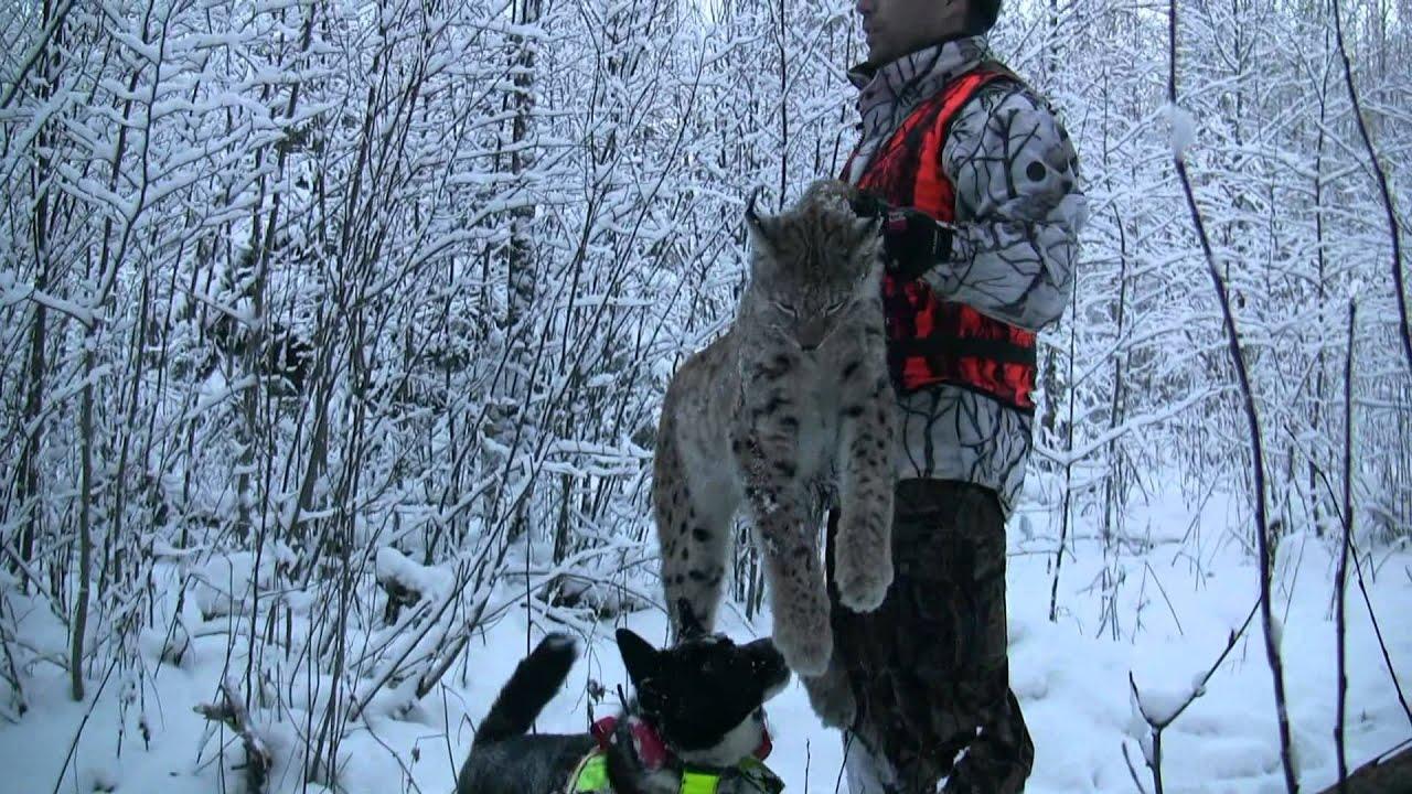 охота на рыбалку сургут снегоходы