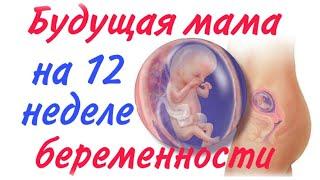 Будущая мама на 12 неделе беременности!