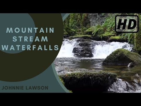 Forest Waterfall Nature Sounds-Relaxing Birds Singing-Natural Sound of Water Relaxation