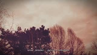 Azad Penaber - Politize Romantizm (Şiir) mp3 indir