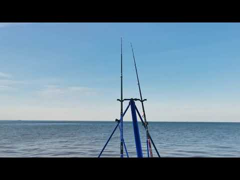 Sea Fishing In Kent - Update - No Fish!