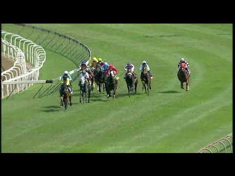 Download 20200916 Hollywoodbets Greyville express clip Race 3 won by SOLAR FLARE