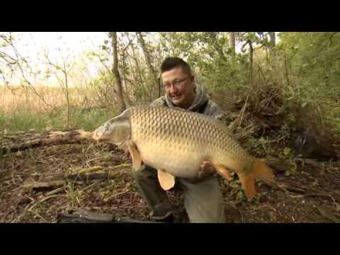Korda carp tackle tactics tips vol 6 part 1 2013 for Carp fishing tips