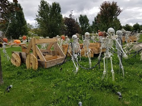 Brian Ross - HALLOWEEN HOUSE!! With a huge SKELETON ARMY!