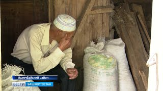 В Башкирии два соседа не могут поделить телку