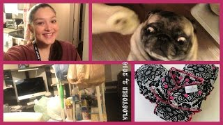 Pugs, flood & cloth diapers..OH MY! Vlogtober 2, 2014