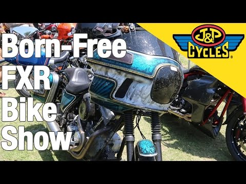 Born Free 8 FXR Show