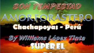 EL CHOLO MACHO Y SON TEMPESTAD - AMOR FORASTERO(primicia july 2010)