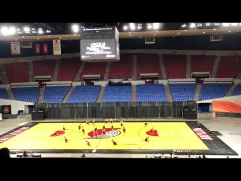West Albany High School Hi-Steppers State 2018 OSAA Dance and Drill
