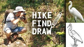 Hiking a Farm in Costa Rica & Drawing a Crane
