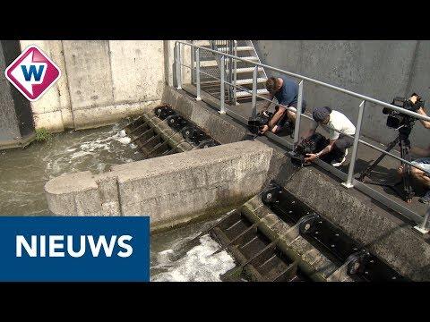 Zuid-Holland krijgt zoetwater uit Utrecht - OMROEP WEST