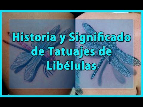 Historia Y Significado De Tatuajes De Libélulas Youtube
