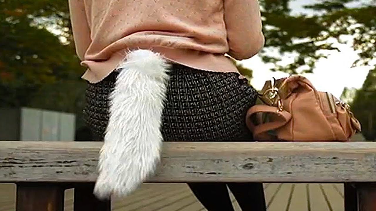 Wearable Tails For Humans Wags When Heart Rate Increases Youtube