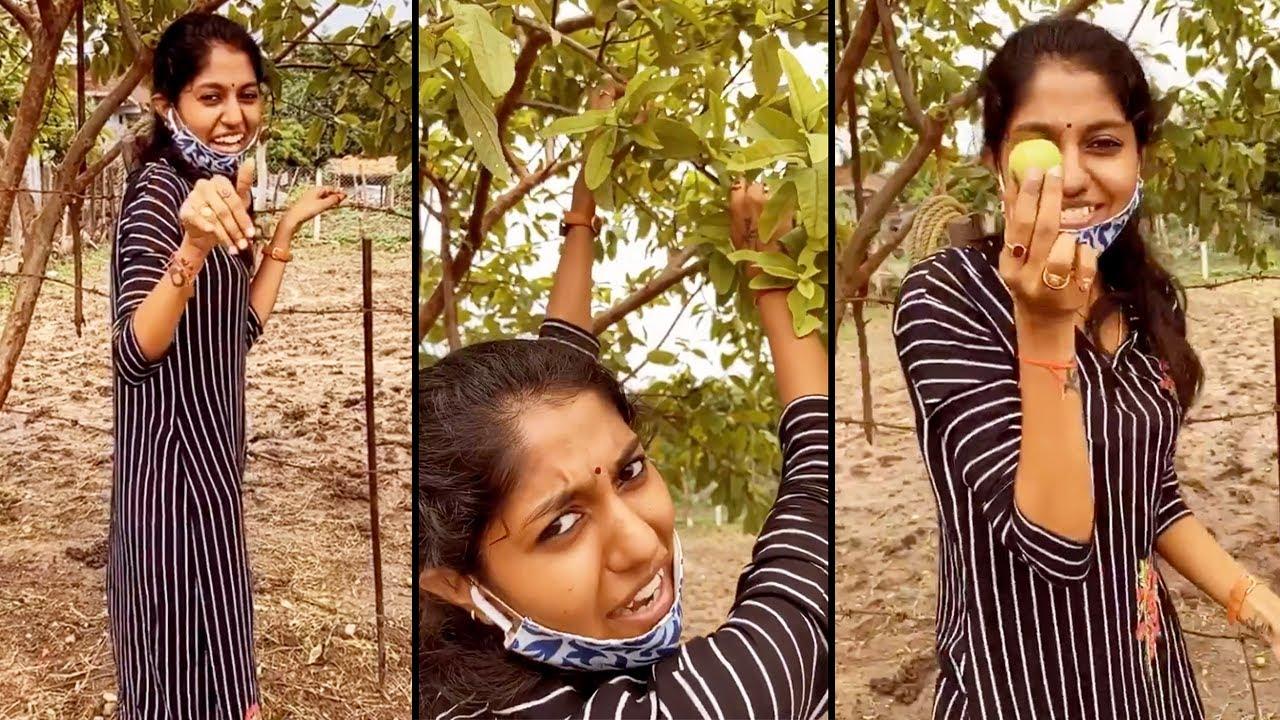 Singer Madhu Priya Plucking Guava Fruit | Manastars