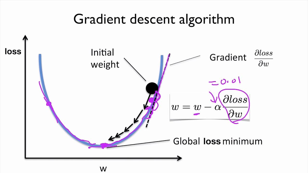 PyTorch Lecture 03: Gradient Descent
