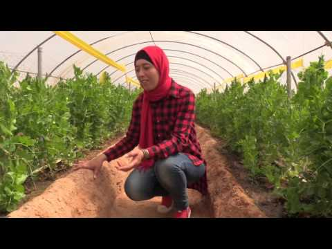 Nature & More grower: Nahed of Desert Joy Organic