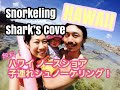Snorkelling at Shark's Cove Oahu with our daughter - ハワイ・オアフ島ノースショアで子連れシュノーケル!【シャークスコーブ】