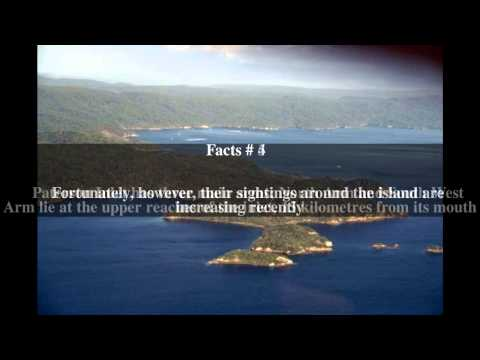 Paterson Inlet Top # 7 Facts