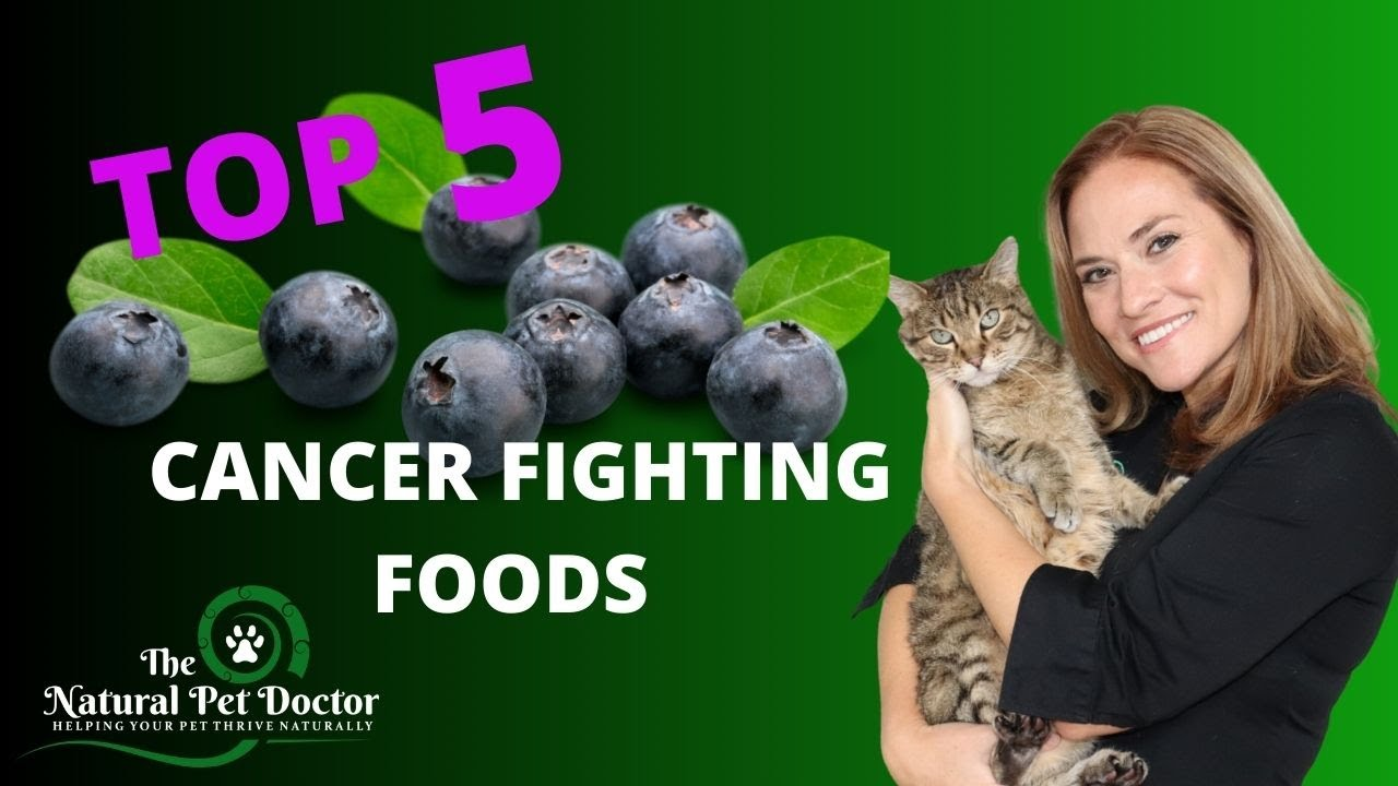 (Top 5 Cancer Fighting Foods) for Your Dogs and Cats with Dr. Katie Woodley - The Natural Pet Doctor