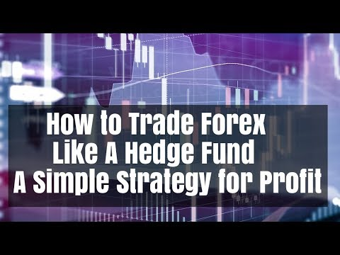 Hedge fund strategy forex